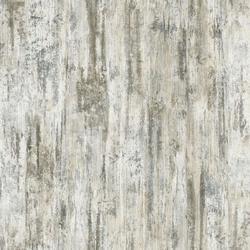 borovice bělená R55031 +15%
