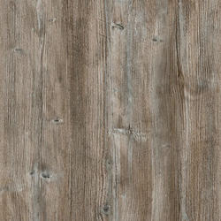 borovice pan. R55004 +15%
